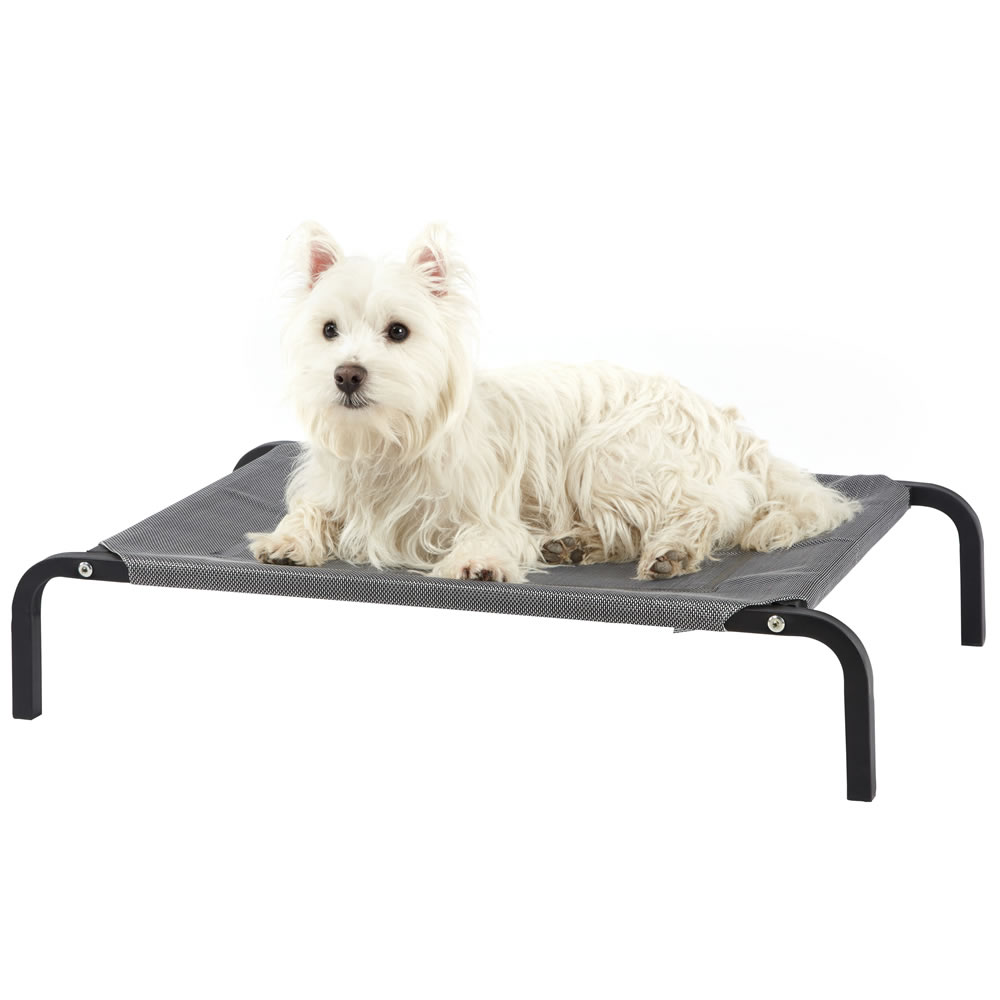 Elevated Dog Bed Dimensions