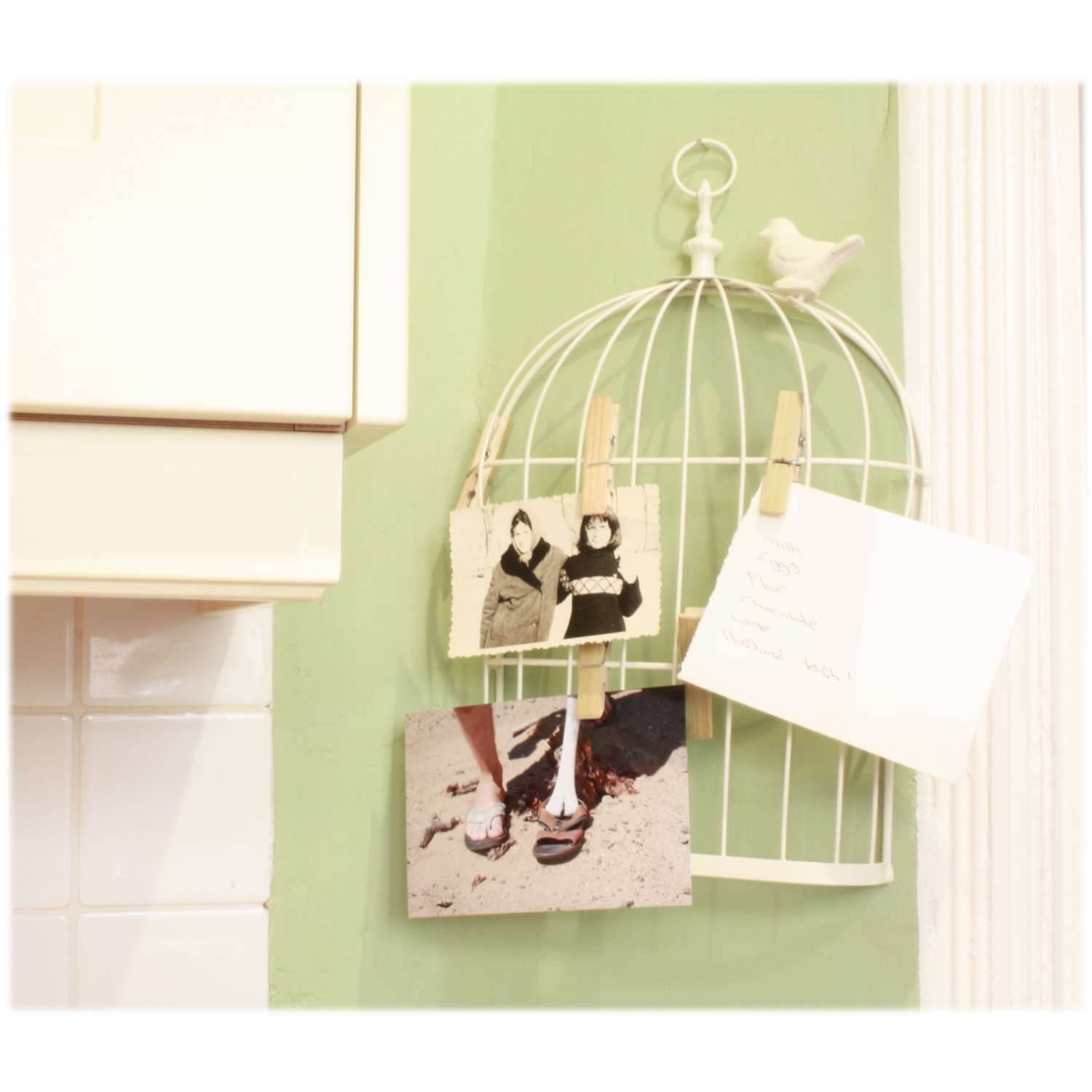 Wall Mounted Bird Cage Design Memo Holder With 5 Clips