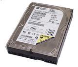 Western Digital WD153BA-00AGA0 15.3GB IDE Hard Disk Drive