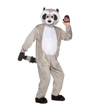 Adults Grey Racoon Mascot Fancy Dress Costume