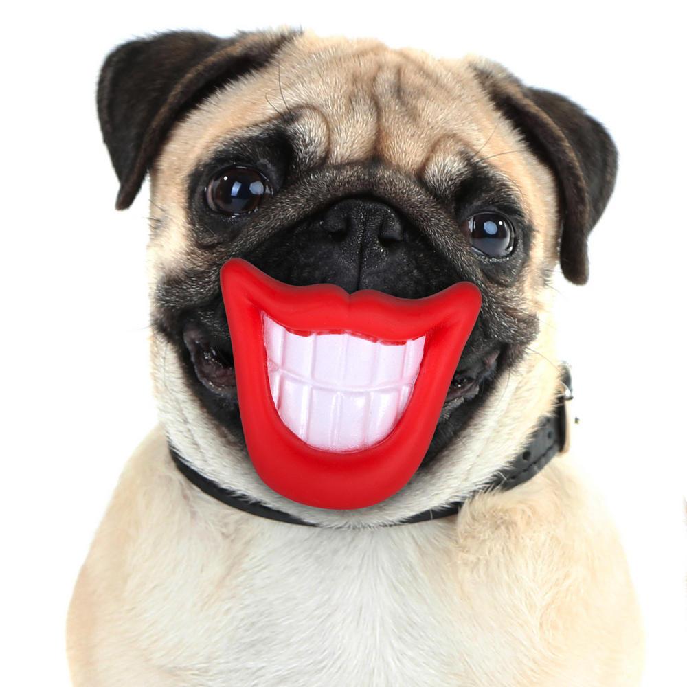 Smiling Teeth Dog Toy