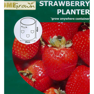 Green Jem Reusable Grow Your Own Garden Fruit Flowers Strawberry Planter Container