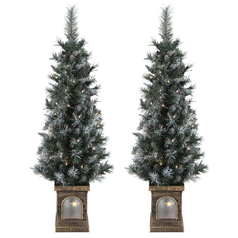Set Of 2 Pre-Lit 4ft (120cm) Frosted Christmas Garden ...
