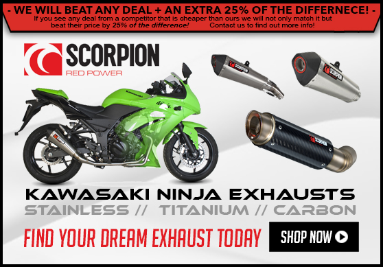 Scorpion Ninja