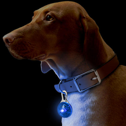 CampTeck Dog Pet Collar Pendant LED Safety Clip-On Night Light with 3 Modes Thumbnail 2