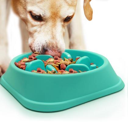 iGadgitz Home Slow Feeder Dog Bowl Interactive Bloat Stop Maze Dog Bowl Pet Cat Puzzle Slow Eating Bowl Thumbnail 2