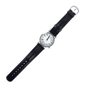 The Einsteinian Relativity Watch - The Wristwatch For Big Bang Theory Physicists Thumbnail 6