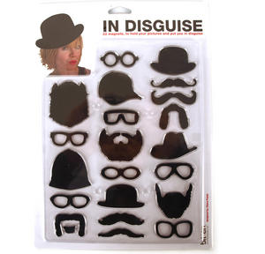 In Disguise - 22 Fridge Magnets To Hold Your Pictures And Put You In Disguise. Thumbnail 2