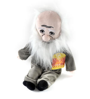 Charles Darwin  Soft Toy - Little Thinkers Doll Thumbnail 3
