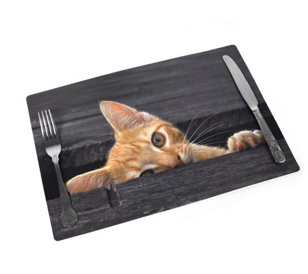 "Catseye Placemat 17"" X 11"""