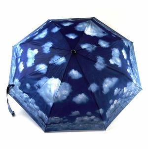 Blue Sky Foldaway Pop Up Compact Umbrella Thumbnail 3