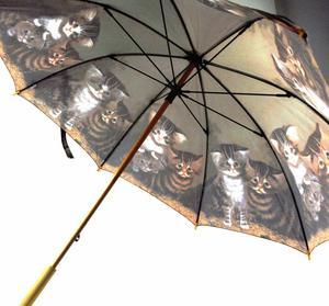 Kittens Walker Umbrella Thumbnail 5