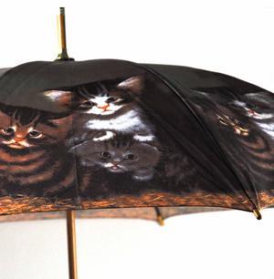 Kittens Walker Umbrella Thumbnail 8
