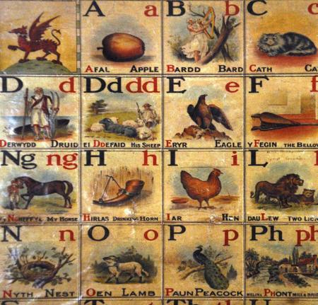Welsh Alphabet Magnet Set - Fridge Magnets