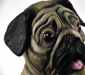 Pug Dog  Head - Lifesize Head Mask Thumbnail 1
