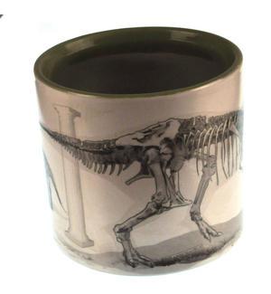 Disappearing Dinosaur - Live to Skeleton Heat Change Mug Thumbnail 4