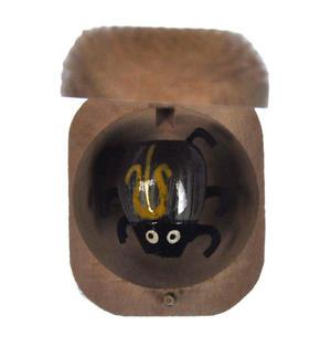 Beetle in a Nut - Random Colours Thumbnail 1