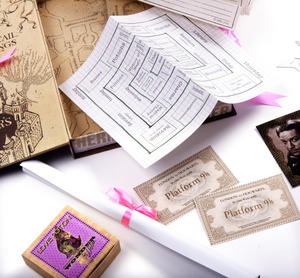 Hermione Granger Film Artefact Box - A Trove of Replica Harry Potter Documents and Keepsakes Thumbnail 6