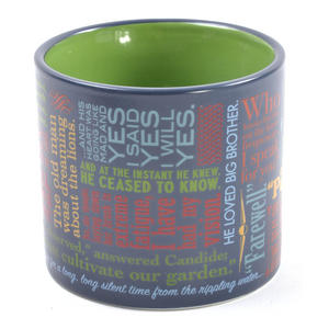 Greatest Last Lines of Literature Ever Mug - Gatsby, Moby Dick, Quixote, 1984 etc Thumbnail 3
