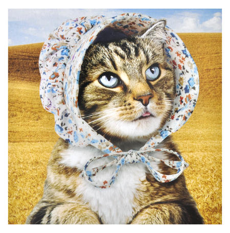 Cat Bonnet - Cats Love It