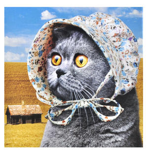 Cat Bonnet - Cats Love It Thumbnail 2