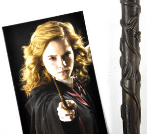 Hermione Grainger Pen Wand & Bookmark - Noble Collection Harry Potter Replica Thumbnail 2