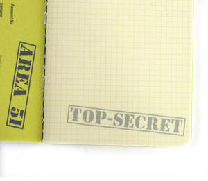 Area 51 Passport - Top Secret Alien Pocket Notebook Thumbnail 4