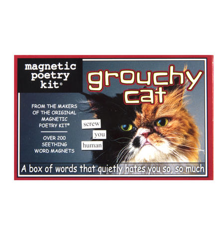 Grouchy Cat - Fridge Magnet Set - Fridge Poetry