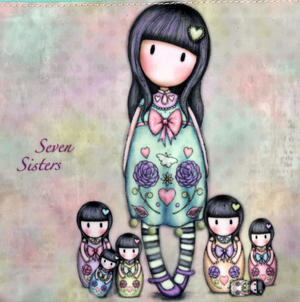 Seven Sisters - Large Coated Accessory Case Thumbnail 2