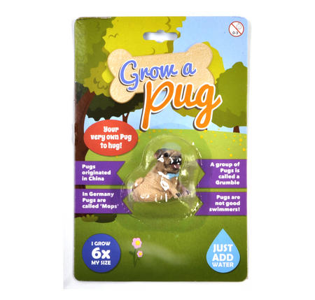 Grow Your Own Pug