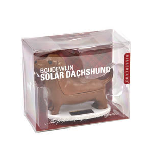 Solar Boudewijn Dachshund Thumbnail 4