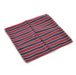 Navy & Red Striped Pocket Square Handkerchief Thumbnail 1