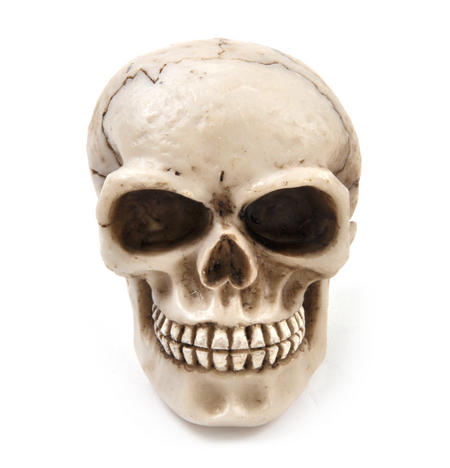 Skull Gear Knob Car Accessory 8cm / 3""