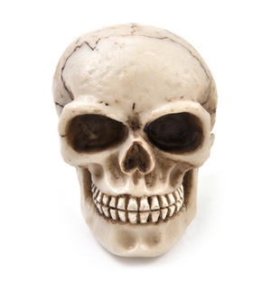 "Skull Gear Knob Car Accessory 8cm / 3"" Thumbnail 1"