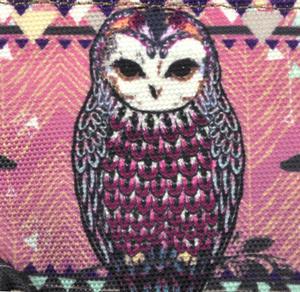 Owl / La Chouette Curiosités Sauvages Coin Purse Thumbnail 2