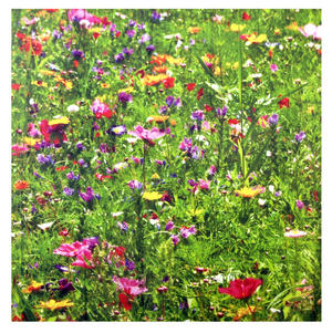 Flower Shower Curtain 180 x 200 cm / 70 x 79 inches Thumbnail 5