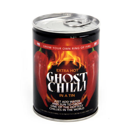Grow Your Own Ghost Chilli - The Hottest Chilli on the Planet