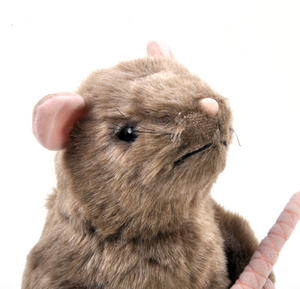 Harry Potter Scabbers Plush by The Noble Collection Thumbnail 4