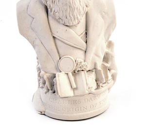 Charles Darwin Statuette - Famous Faces Collection Plaster Bust Thumbnail 5