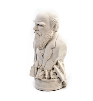 Charles Darwin Statuette - Famous Faces Collection Plaster Bust Thumbnail 6
