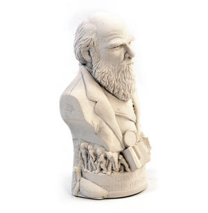 Charles Darwin Statuette - Famous Faces Collection Plaster Bust Thumbnail 7