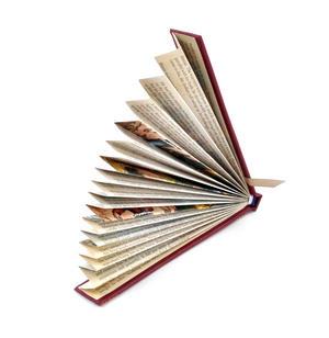 Red Book Fan - The Literary Hand Fan Thumbnail 3