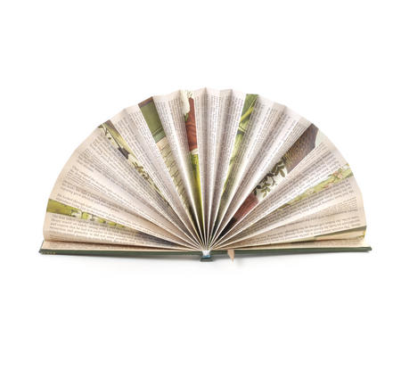Green Book Fan - The Literary Hand Fan