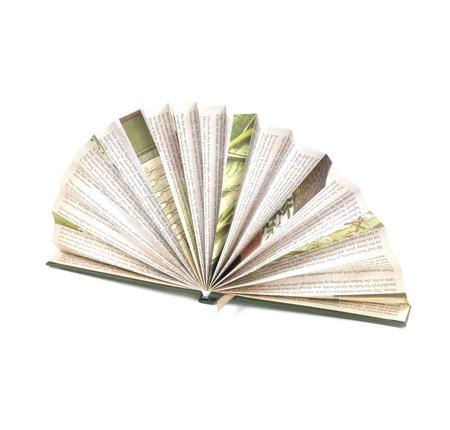 Blue Book Fan - The Literary Hand Fan