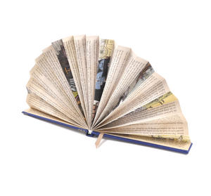 Blue Book Fan - The Literary Hand Fan Thumbnail 2