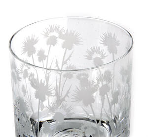 Thistle - 30cl Animo Glass Whiskey Tumbler by The Milford Collection Thumbnail 4