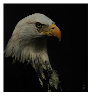 L'aigle / Eagle - Galerie De Portraits - Surreal Wall Tray Art Masterwork by iBride Thumbnail 2
