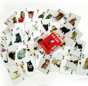 3D Cat Playing Cards Thumbnail 4