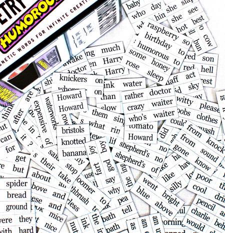 Humorous Fridge Poetry Magnet Set