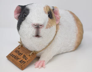 Gary Guinea Pig Garden Ornament Preview